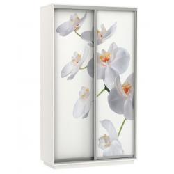 Шкаф-купе Орхидея 1200