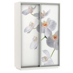 Шкаф-купе Орхидея 1400