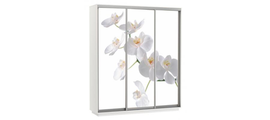 Шкаф-купе Орхидея Трио 2100